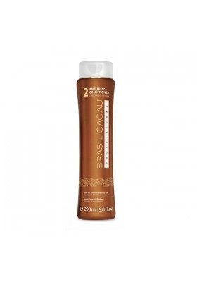 Anti Frizz Conditioner 300Ml